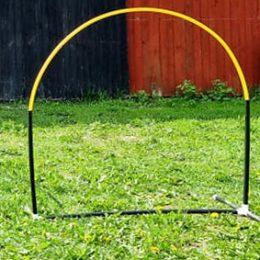 Svart-gul hoop
